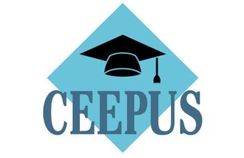 Nyertes CEEPUS hálózatpályázat 2020/21-es tanévre!